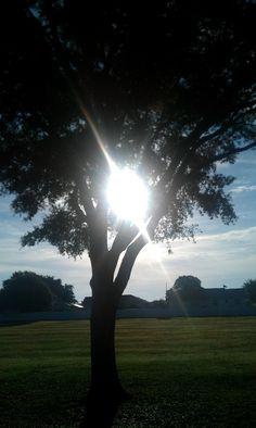 One morning on my walk..