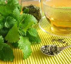 Using and Growing Lemon Balm - Recipes Lemon Balm Recipes, Lemon Balm Uses, Tea Recipes, Natural Cures, Natural Health, Growing Lemon Balm, Grow Lemon, Herbal Remedies, Home Remedies