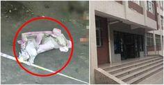 19χρονη φοιτήτρια γέννησε κρυφά στο δωμάτιό της και πέταξε το νεογέννητο μωρό της από το παράθυρο του 5ου ορόφου Σας ενδιαφέρουν                          Δεμένο το σκυλάκι πέθανε από δίψα και θερμοπληξία ...