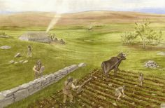 Staneydale Neolithic Settlement