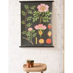 Dog Rose Wall Chart (Small)