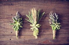 Our wedding colors are inspired by these elements.  Lavender, Wheat and greenery (moss, specifically, but succulents work too!)