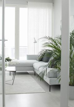 49 Minimalist Interior Ideas That Make You Enchanted - Wohnung Einrichten Living Room Furniture, Interior, Small Room Design, Minimalist Living Room, Living Room Diy, Home Decor, House Interior, Living Room Furniture Layout, Minimalist Living Room Design