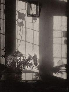 on my window, 1930,  fotógrafa olive cotton