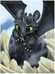 Toothless hatching from egg