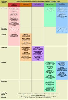 DSM 5 visual
