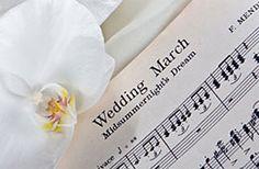 ba6e3891db5 14 bästa bilderna på Bröllop | Alon livne wedding dresses, Bridal ...