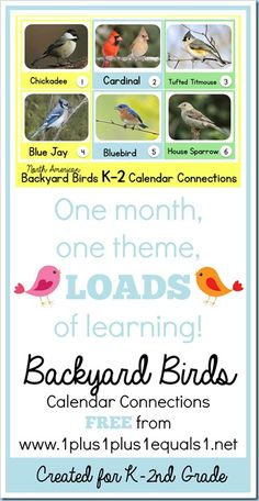 Backyard Birds K-2 Calendar Connections ~ FREE!