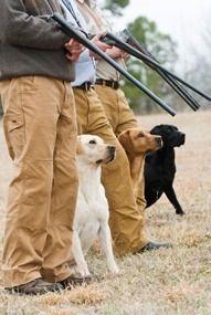 Huntin dogs