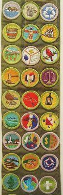 merit badge ideas - eagle scout badges