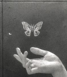 Keep your butterfly before the butter melted - Animals Tiktok Photo Wall Collage, Picture Wall, Aesthetic Art, Aesthetic Pictures, Black And White Aesthetic, Aesthetic Wallpapers, Art Inspo, Art Reference, Sketches