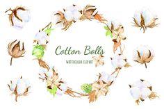 Watercolor Clip Art Cotton Boll Illustration by CornerCroft