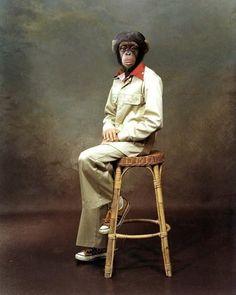monkey man