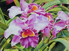 Tropical Orchid by Lynn Miller