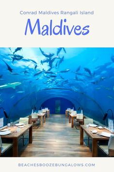 Conrad Maldives Rangali Island, Maldives — beaches, booze, and bungalows Best Wineries In Napa, Visit South Africa, Maldives Beach, Overwater Bungalows, Beach Villa, Beach Quotes, Beaches In The World, Island Resort, Beach Fun