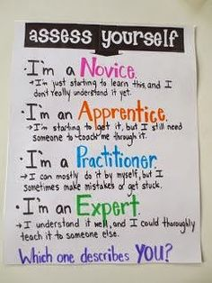 Life in Fifth Grade - Assess Yourself poster