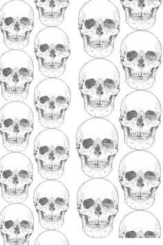 Skulls on skulls