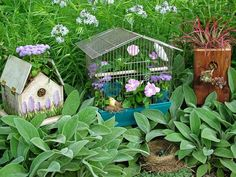 For the Birds  - Stunning Low-Budget Container Gardens on HGTV