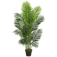 With different hues of a rich green, this 5 ft. paradise palm artificial tree is sure to bring a piece of the outdoors to any setting. Several stalks extend upwards with smooth leaves creating a full, realistic looking piece. Place it on a hall table Silk Plants, Fake Plants, Types Of Plants, Potted Plants, Areca Palm Plant, Portal, Tree Base, Silk Tree, Artificial Tree