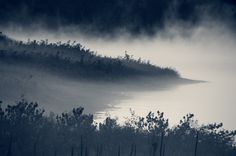 500px / EARLY MORNING ERIE FOG by Bobbi Anderson Photography