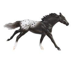 Appaloosa Sport Horse, Black Blanket Appy