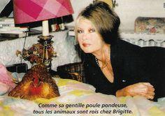 1996 - Brigitte Bardot dans sa chambre de Bazoches avec sa poule. Fondation Brigitte Bardot, Kitten, Dali, Salvador, Images, Favorite Things, Bb, Photos, France