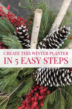 Create a simple and beautiful winter planter in 5 easy steps! Outdoor Christmas Planters, Christmas Urns, Outdoor Christmas Decorations, Country Christmas, Christmas Holidays, Outdoor Planters, Victorian Christmas, Christmas 2019, Christmas Gifts
