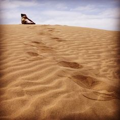 Dunes Photo by @Monica Cella