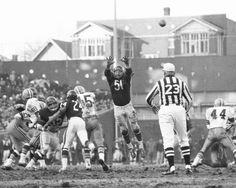 Chicago Bears - Dick Butkus Defends