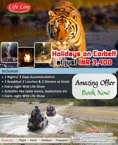 Holiday in Corbett at 3,400 Per Person Include : Accommodation +2 Breakfast 2 Lunches & 2 Dinners + Every Night Bone Fire