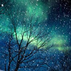 vixzenx's save of Nature photography winter photography northern lights snow photo blue green starry night falling night zodiac astrology - Aurora 5x5 on Wanelo