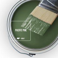 Behr Paint Colors, Neutral Paint Colors, Paint Colors For Home, Wall Colors, House Colors, Gray Paint, Trending Paint Colors, Green Paint Colors, Room Colors