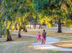 Awareness :Family regular evening walking exercise for better health Location:Darebin Creek, Bundoora, Melbourne   Photographer: M Goh
