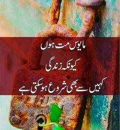 Hello Quotes, Ali Quotes, People Quotes, Urdu Poetry Romantic, Love Poetry Urdu, Poetry Quotes, Urdu Quotes Images, Quotations, Qoutes