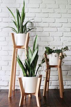 Одно из лучших практичных решений создать уютную атмосферу в комнате благодаря комнатным цветам.