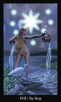 XVII - L'étoile - Tarot sorcières par Ellen Dugan & Mark Evans Tarot Card Decks, Tarot Cards, Star Tarot, The Hierophant, Tarot Major Arcana, Tarot Learning, Tarot Card Meanings, Triple Goddess, Evans