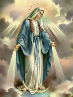 blessed virgin mary december | ... the Immaculate Conception of the Blessed Virgin Mary | one tiny violet