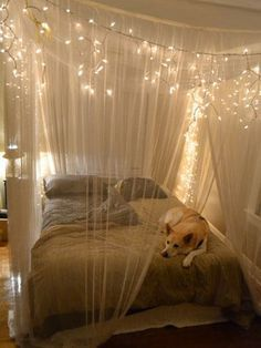 tree branches and white lights in a bedroom - Google Search