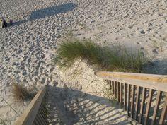 The beach.  What would you like to see?  #seeabettertomorrow
