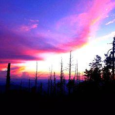 Sunset on Mt. Lemmon | Tucson | Arizona | Photo via Instagram by @randall_brown_photography