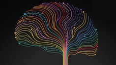 Modern neuroscience is barely 200 years old, and for much of that time, a central dogma of the field held that we are born with all the brain cells we will ever have, and that that adult brain is i…
