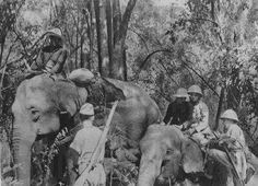Mounted infantry? Japanese soldiers in Asia during WW2