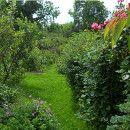 Los paravientos en el huerto o jardín ecoagricultor.com