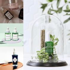 Trend ingredients for sensitive skin Kiehls, Sensitive Skin, Skincare, Table Decorations, Home Decor, Decoration Home, Room Decor, Skincare Routine, Skins Uk