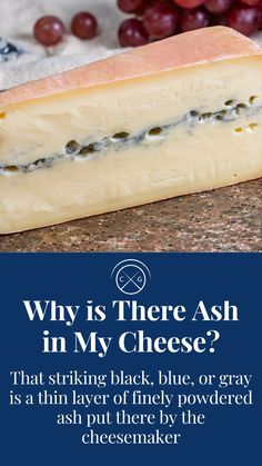 Blue Cheese, Goat Cheese, Cheese Appetizers, Cheese Lover, Funny Facts, Cheese Recipes, Brie, Food Storage, Cheddar