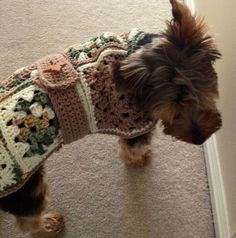 Original Pattern for Granny Square dog sweater