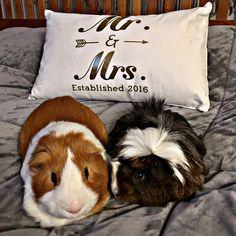I'll sleep with you! To keep you company!