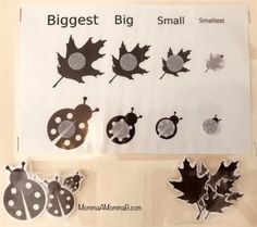 Match the leaf and ladybug silhouettes of different sizes - Biggest, Big, Small, SmallestCan be used to create a file folder game (when cut out and pasted or Velcro-dotted to a manila folder)Thanks for Manila Folder, File Folder Games, Velcro Dots, Community Helpers, School Themes, Tot School, Autumn Leaves, Ladybug, Free Printables