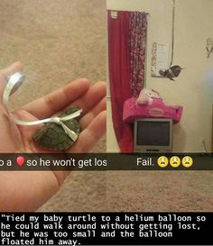 """""""Tied my baby turtle to a helium balloon so he could walk around without getting lost, but he was too small and the balloon floated him away."""