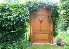 Alte Tür im Garten :) Door